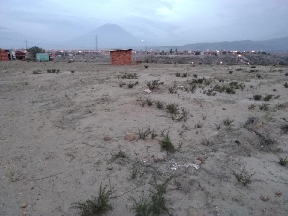 Venta de Terreno en Mollebaya, Arequipa - vista principal