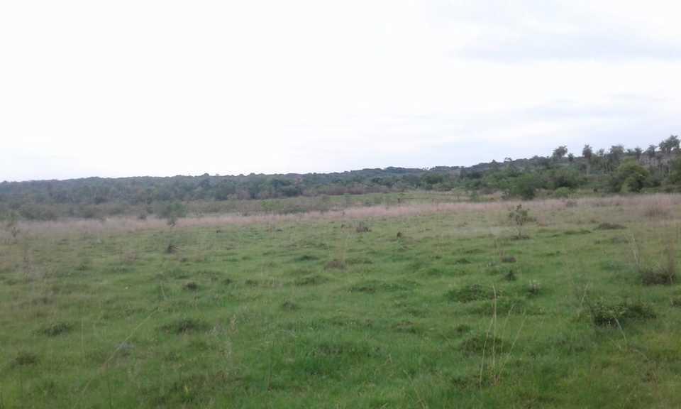 Venta de Terreno, Ucayali 600m2 area total 752m2 area construida