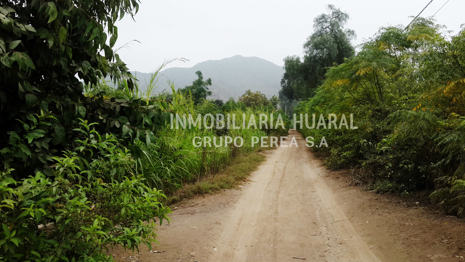Venta de Terreno en Huaral, Lima 10416m2 area total - vista principal