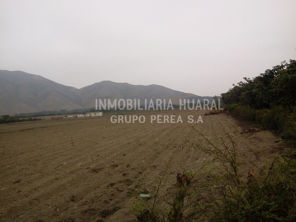 Venta de Terreno en Huaral, Lima 84000m2 area total - vista principal