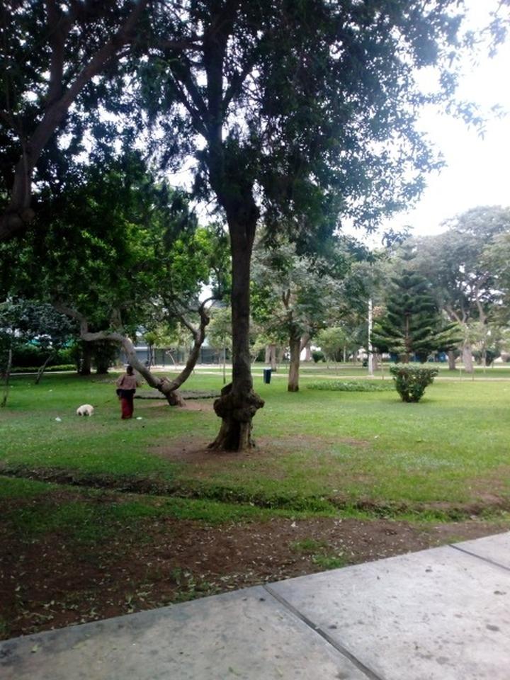 Venta de Departamento en Miraflores, Lima - vista principal
