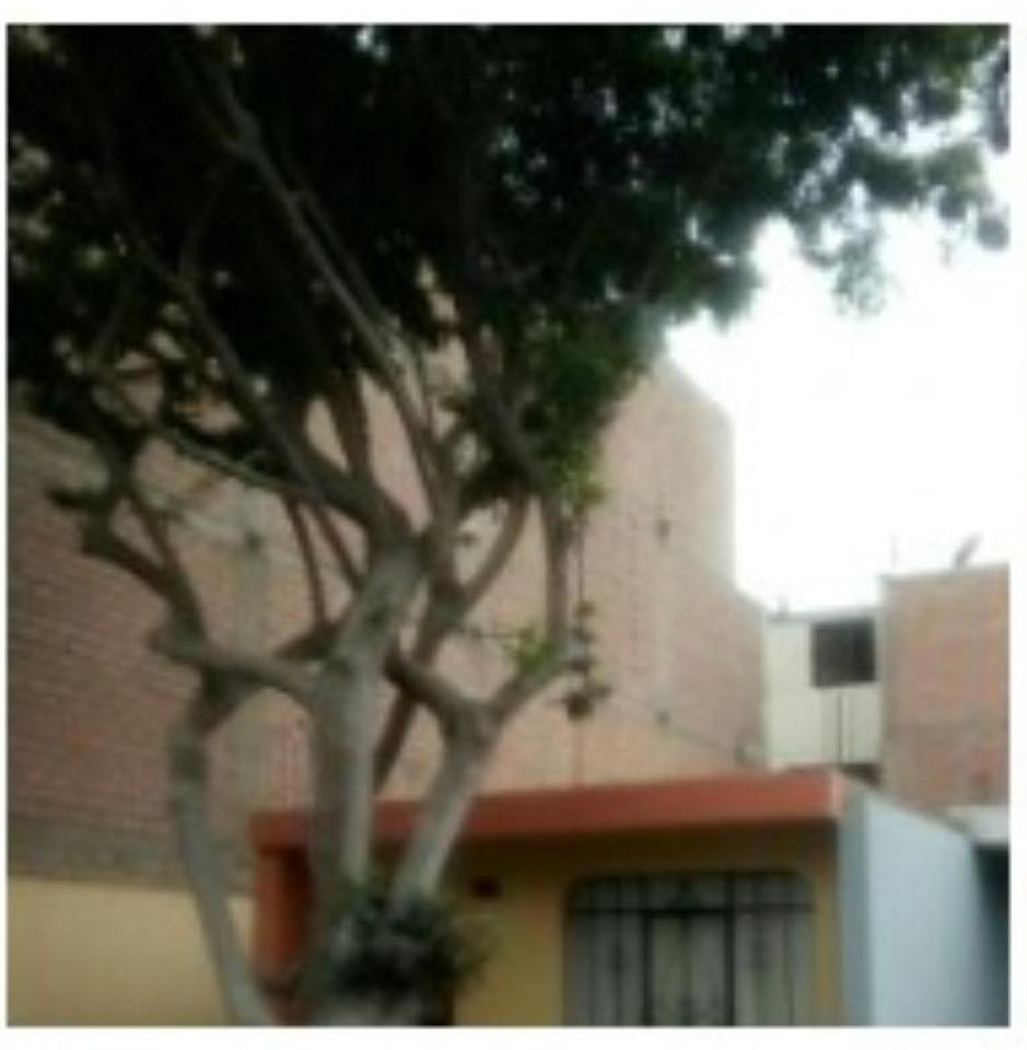 Venta de Terreno en Santiago De Surco, Lima 70m2 area total