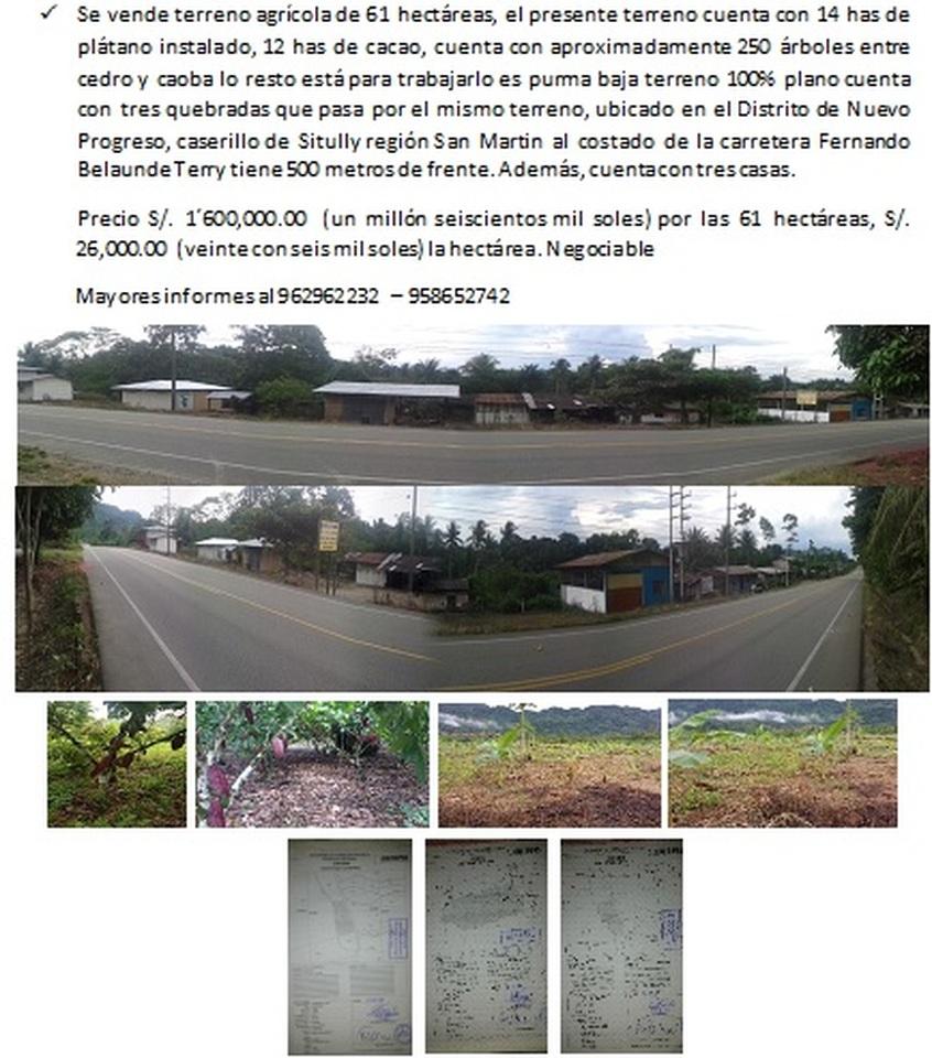 Venta de Terreno en Nuevo Progreso, San Martin 610000m2 area total