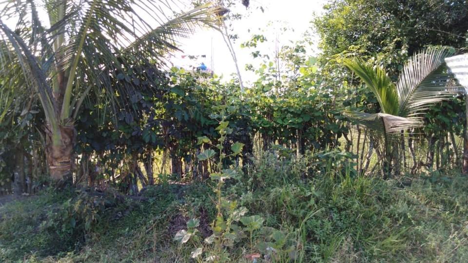 Venta de Terreno en Nueva Cajamarca, San Martin 210m2 area total