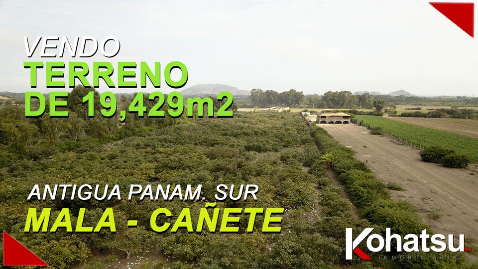 Venta de Terreno en Mala, Lima 19429m2 area total