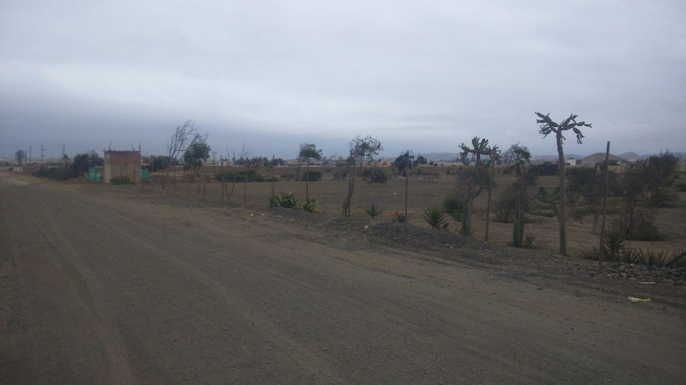 Venta de Terreno en Chilca, Lima 50000m2 area total