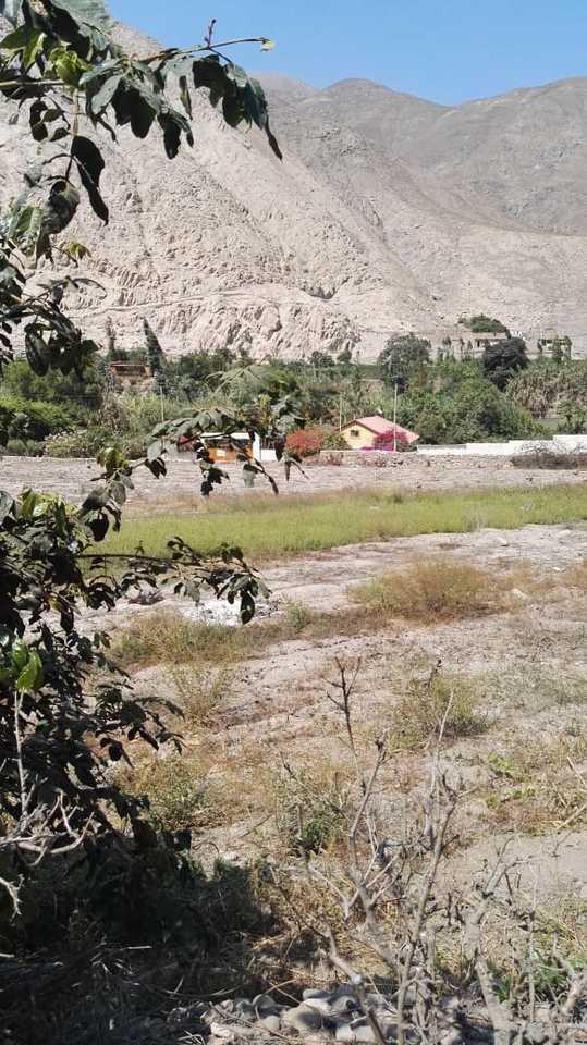 Venta de Terreno en Calango, Lima 1000m2 area total