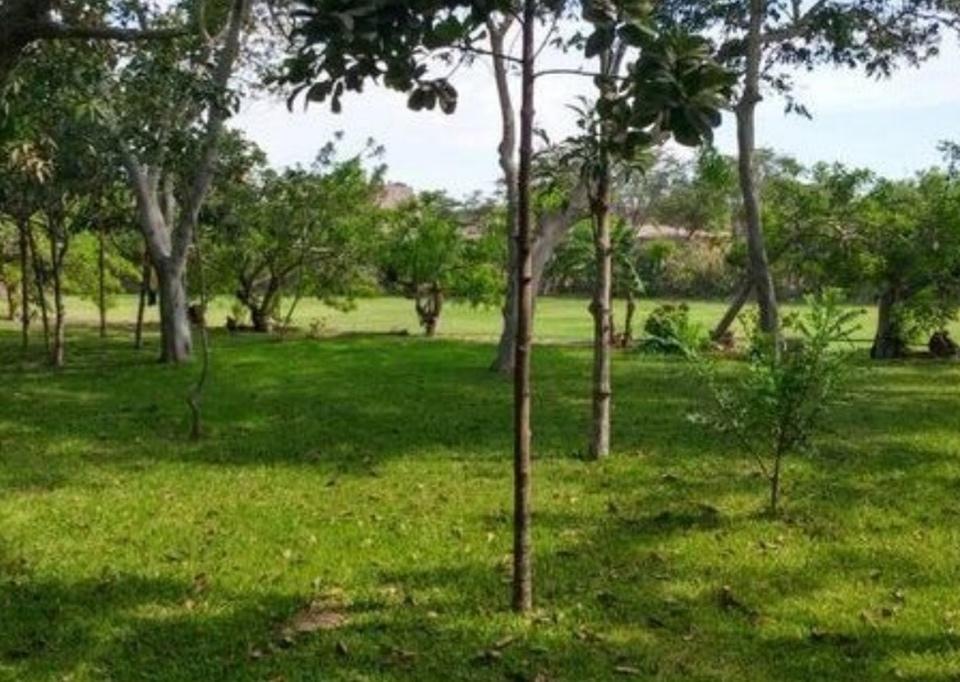 Venta de Terreno en Reque, Lambayeque 140m2 area total