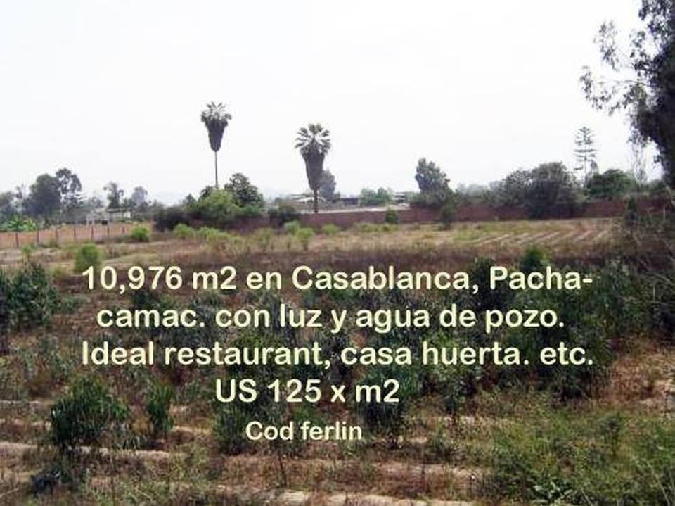Venta de Terreno en Pachacamac, Lima 10976m2 area total - vista principal