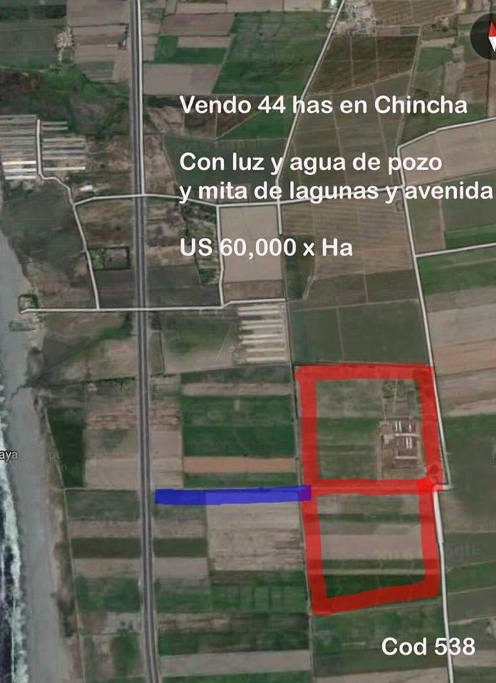 Venta de Terreno en Chincha Baja, Ica 440000m2 area total - vista principal