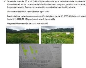 Venta de Terreno en Nuevo Progreso, San Martin 200000m2 area total - vista principal