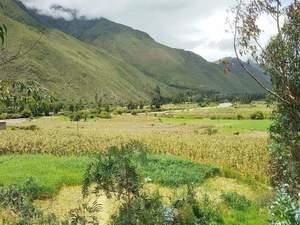 Venta de Terreno en Ollantaytambo, Cusco 9700m2 area total - vista principal