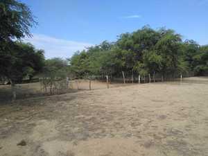 Venta de Terreno en Reque, Lambayeque 300m2 area total - vista principal