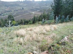 Venta de Terreno en Los Baños Del Inca, Cajamarca 900m2 area total - vista principal