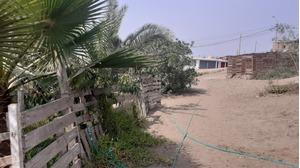 Venta de Terreno en Puente Piedra, Lima 518m2 area total - vista principal
