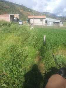 Venta de Terreno en Carhuaz, Ancash 210m2 area total - vista principal