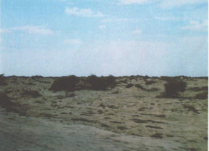 Venta de Terreno en Huacho, Lima 15400m2 area total - vista principal