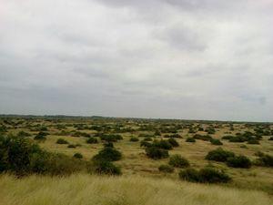 Venta de Terreno en Sullana, Piura 15000000m2 area total - vista principal