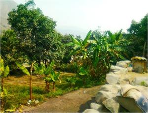 Venta de Terreno en Lurigancho, Lima 800m2 area total - vista principal