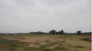 Venta de Terreno en Morrope, Lambayeque 248291m2 area total - vista principal